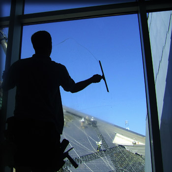 window tinting denver